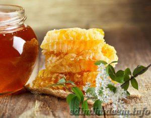 сорта меда и их полезные свойства