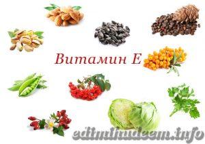 Источник витамина Е