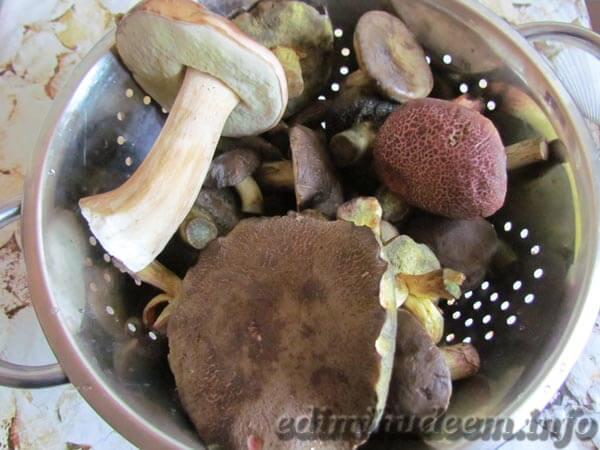 Маринованные грибы (рецепт без стерилизации)